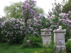 St. Marxer Friedhof