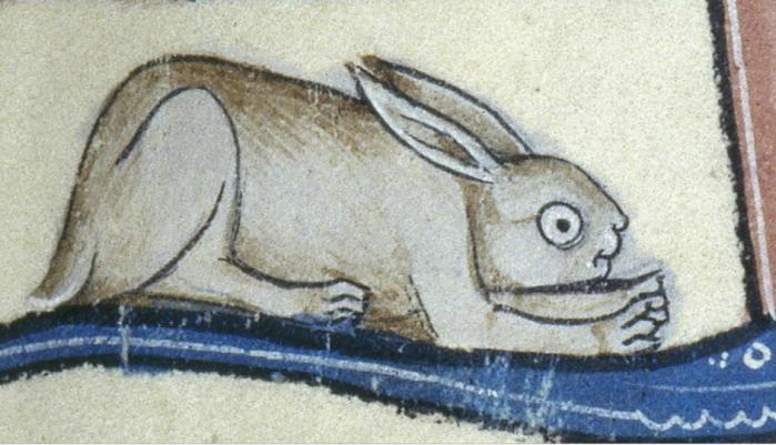 Schaut etwas gestört, der Hase. 'De Lisle Psalter', England ca. 1310 (British Library, Arundel 83 II)