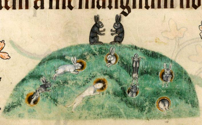 Viele Löcher, viele Hasen. Luttrell Psalter, England ca. 1325-1340 (British Library, Add 42130, fol. 176v)