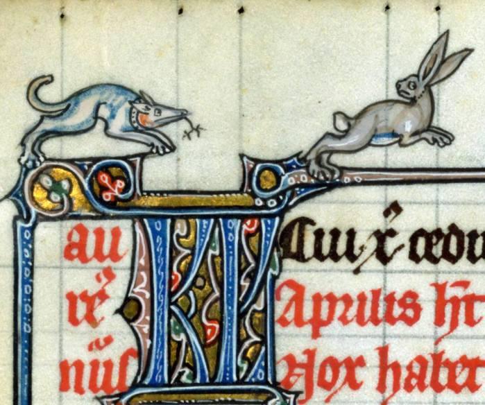 Auf dem Sprung. 'Fieschi Psalter', Cambrai ca. 1290-1295 (Baltimore, The Walters Art Museum, Walters Manuscript W.45, fol. 6v)